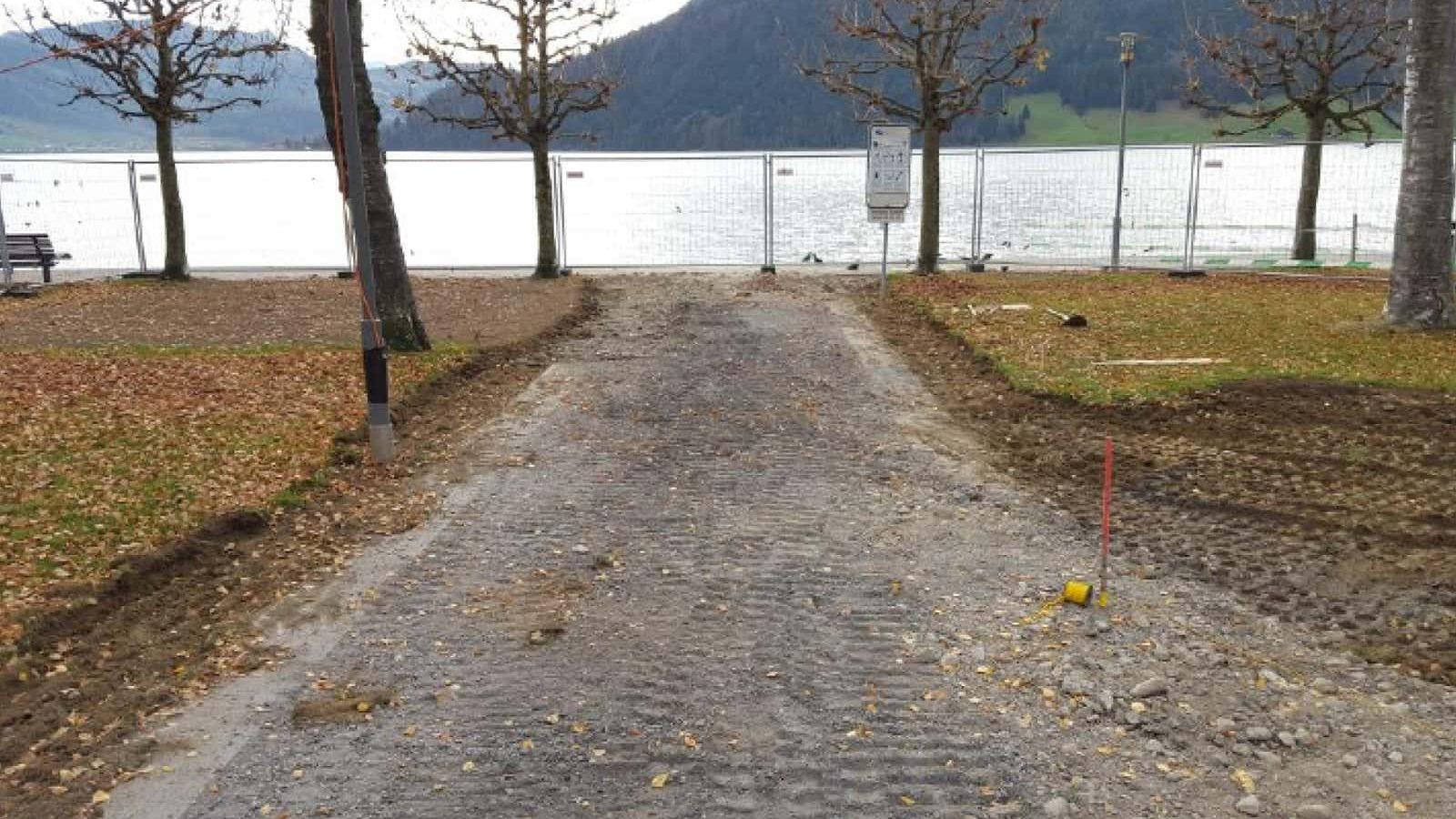 Seeufergestaltung Oberaegeri Beläge Bäume