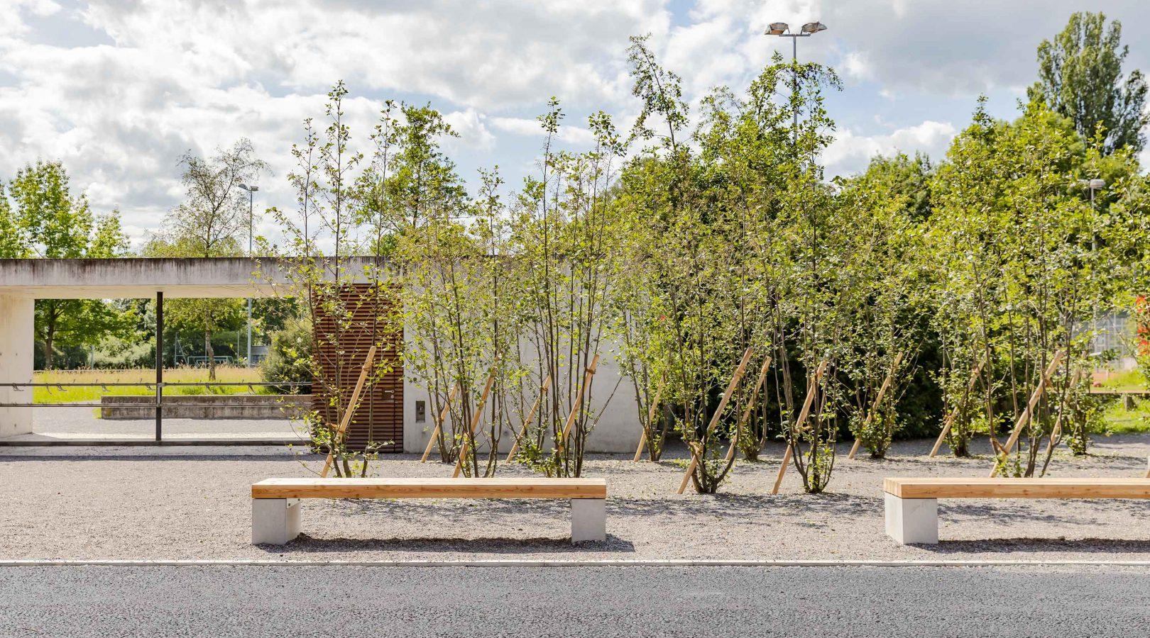 Schule Garteneinrichtung Bepflanzung Zug
